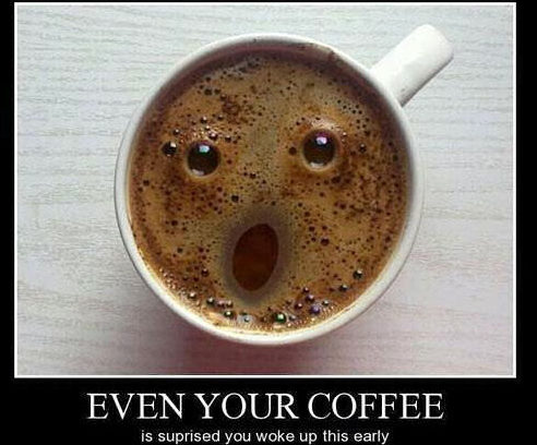 20-funny coffee picture-specialists helping businesses run on autopilot